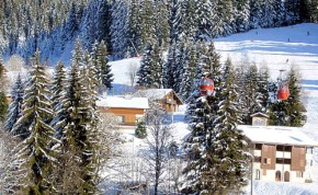Ski Chalets in Morzine - Image Credit:Photos courtesy of www.morznet.com